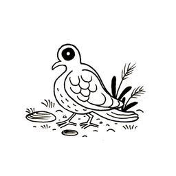 Pigeon. Source : http://data.abuledu.org/URI/52d7cf43-pigeon