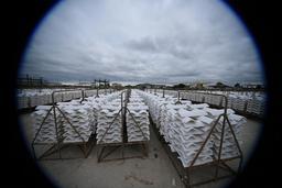 Piles de tuiles chaulées au port de Gujan-Mestras. Source : http://data.abuledu.org/URI/55a91e88-piles-de-tuiles-chaulees-au-port-de-gujan-mestras