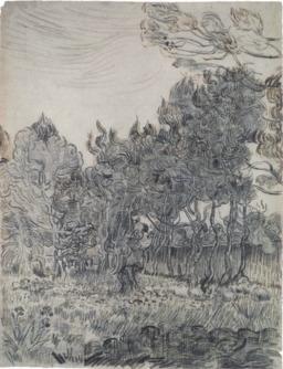 Pins dans le jardin de l'asile en 1889. Source : http://data.abuledu.org/URI/55148f17-pins-dans-le-jardin-de-l-asile-en-1889