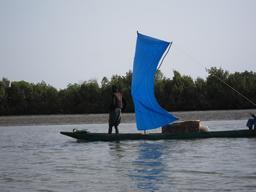 Pirogue à voile en Casamance. Source : http://data.abuledu.org/URI/5493546b-pirogue-a-voile-en-casamance