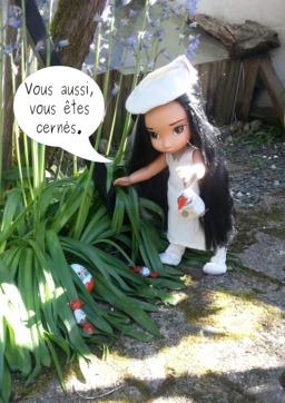Pitaya à Pâques - 17. Source : http://data.abuledu.org/URI/583dc781-pitaya-a-paques-17