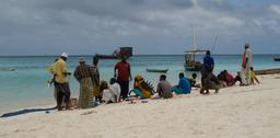 Plage en Tanzanie. Source : http://data.abuledu.org/URI/50321c55-plage-en-tanzanie