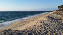 Plage océane en avril - 01. Source : http://data.abuledu.org/URI/571e7c8f-plage-oceane-en-avril-01