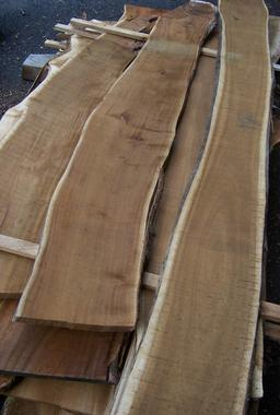 Planches de tamarins des hauts. Source : http://data.abuledu.org/URI/521fafc7-planches-de-tamarins-des-hauts