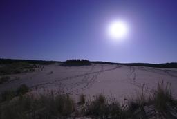 Pleine lune sur la Dune du Pilat. Source : http://data.abuledu.org/URI/55ee2503-pleine-lune-sur-la-dune-du-pilat