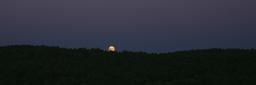 Pleine lune sur la forêt de La Teste. Source : http://data.abuledu.org/URI/55ee21d4-pleine-lune-sur-la-foret-de-la-teste