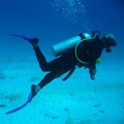 Plongeur sous-marin. Source : http://data.abuledu.org/URI/51bc66dd-plongeur-sous-marin