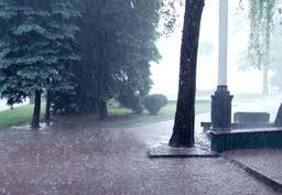 Pluie dans un parc. Source : http://data.abuledu.org/URI/5232c6c6-pluie-dans-un-parc