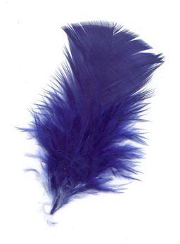 Plume bleue. Source : http://data.abuledu.org/URI/5020bd6c-pluma-azul-jpg