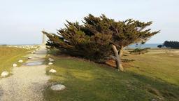 Pointe du Conguel à Quiberon. Source : http://data.abuledu.org/URI/56d3af78-pointe-du-conguel-a-quiberon