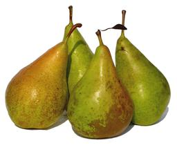 Poire. Source : http://data.abuledu.org/URI/501a7974-poire
