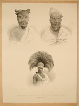 Polynésiens en 1838. Source : http://data.abuledu.org/URI/59808218-polynesiens-en-1838