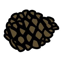 Pomme de pin couchée. Source : http://data.abuledu.org/URI/5628f0d2-pomme-de-pin-couchee