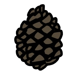 Pomme de pin debout. Source : http://data.abuledu.org/URI/5628f08a-pomme-de-pin-debout