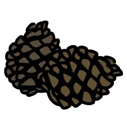 Pommes de pin. Source : http://data.abuledu.org/URI/5628f10f-pommes-de-pin