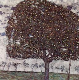 Pommiers de Gustav Klimt en 1916. Source : http://data.abuledu.org/URI/53e7f548-pommiers-de-gustav-klimt-en-1916