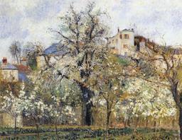 Pommiers en fleurs à Pontoise. Source : http://data.abuledu.org/URI/516db553-pommiers-en-fleurs-a-pontoise