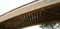 Pont en bois vu de dessous. Source : http://data.abuledu.org/URI/55abeb5e-pont-en-bois-vu-de-dessous