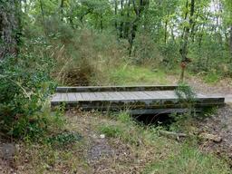 Pont et craste dans le parc du Bourgailh. Source : http://data.abuledu.org/URI/5826cb02-pont-et-craste-dans-le-parc-du-bourgailh