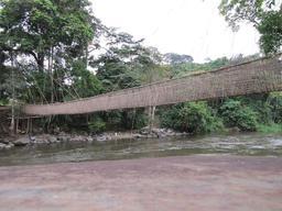Pont suspendu au Gabon. Source : http://data.abuledu.org/URI/52d52827-pont-suspendu-au-gabon
