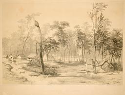 Port Essington en Australie en 1838. Source : http://data.abuledu.org/URI/59816330-port-essington-en-australie-en-1838