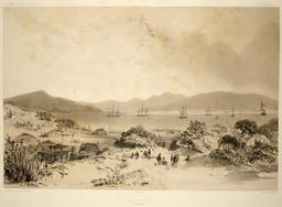 Port Otago en Nouvelle-Zélande. Source : http://data.abuledu.org/URI/5981a09b-port-otago-en-nouvelle-zelande