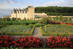 Potager de Villandry. Source : http://data.abuledu.org/URI/55e759b4-potager-de-villandry
