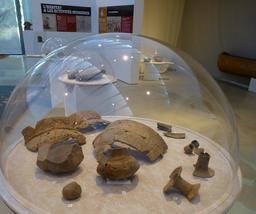 Poteries protohistoriques landaises. Source : http://data.abuledu.org/URI/5827f18c-poteries-protohistoriques-landaises
