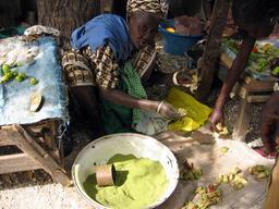 Poudre de feuilles de baobab sêchées. Source : http://data.abuledu.org/URI/52e5519c-poudre-de-feuilles-de-baobab-sechees
