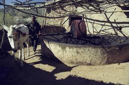 Pressoir à huile. Source : http://data.abuledu.org/URI/58a38a3c-pressoir-a-huile