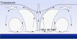 Profil d'ouragan. Source : http://data.abuledu.org/URI/52c7cae0-profil-d-ouragan