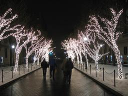 Promenade nocturne en ville à Noël. Source : http://data.abuledu.org/URI/52f9634c-promenade-nocturne-en-ville-a-noel
