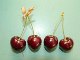 Quatre cerises. Source : http://data.abuledu.org/URI/532c4a23-quatre-cerises