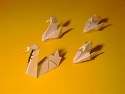 Quatre cygnes en origami. Source : http://data.abuledu.org/URI/52f1632d-quatre-cygnes-en-origami