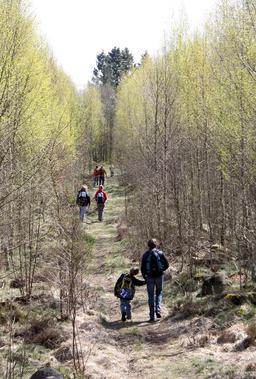 Randonnée pédestre en Suède. Source : http://data.abuledu.org/URI/52b95d01-randonnee-pedestre-en-suede