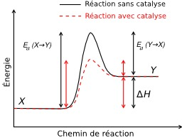 Réaction avec et sans catalyse. Source : http://data.abuledu.org/URI/50cdb6cc-reaction-avec-et-sans-catalyse
