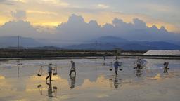 Récolte de sel marin au Vietnam. Source : http://data.abuledu.org/URI/5922a081-recolte-de-sel-marin-au-vietnam