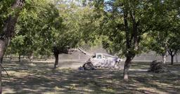 Récolte mécanique de noix de pécan au Texas. Source : http://data.abuledu.org/URI/5656e32e-recolte-mecanique-de-noix-de-pecan-au-texas