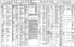 Regnum Animale de Linné (1735). Source : http://data.abuledu.org/URI/56ca36a4-regnum-animale-de-linne-1735-