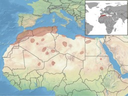Répartition en Afrique de la gerbille champêtre. Source : http://data.abuledu.org/URI/52e1841e-repartition-en-afrique-de-la-gerbille-champetre
