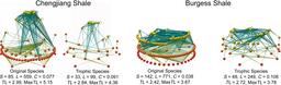 Réseaux trophiques en paléoenvironnements. Source : http://data.abuledu.org/URI/50b7e40a-reseaux-trophiques-en-paleoenvironnements
