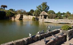Réservoirs d'eau à Montevideo. Source : http://data.abuledu.org/URI/5501baa3-reservoirs-d-eau-a-montevideo
