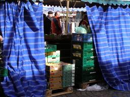 Rideau bleu. Source : http://data.abuledu.org/URI/502cdd4f-rideau-bleu