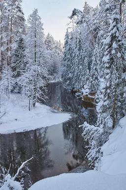 Rivière Ahja en hiver en Estonie. Source : http://data.abuledu.org/URI/5504b434-riviere-ahja-en-hiver-en-estonie