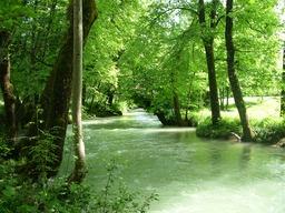Rivière de l'Eau Morte. Source : http://data.abuledu.org/URI/5021133d-riviere-de-l-eau-morte