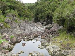 Rivière des Marsouins à La Réunion. Source : http://data.abuledu.org/URI/5276b38e-riviere-des-marsouins-a-la-reunion