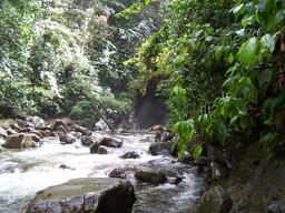 Rivière des Pères en Guadeloupe. Source : http://data.abuledu.org/URI/5276a487-riviere-des-peres-en-guadeloupe