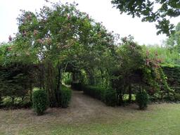 Roseraie dans le parc du Château Malleret à Cadaujac. Source : http://data.abuledu.org/URI/594eadab-roseraie-dans-le-parc-du-chateau-malleret-a-cadaujac