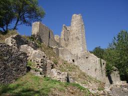 Ruines du château de Schenkenberg en Suisse. Source : http://data.abuledu.org/URI/563b2aeb-ruines-du-chateau-de-schenkenberg-en-suisse