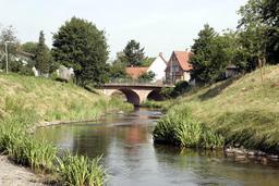 Ruisseau bordé d'iris. Source : http://data.abuledu.org/URI/5360f1d0-ruisseau-borde-d-iris